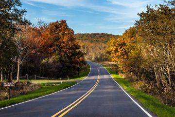 Строительство загородных дорог
