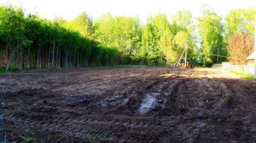 Очистка земельного участка