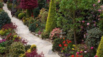 Устройства территории садов